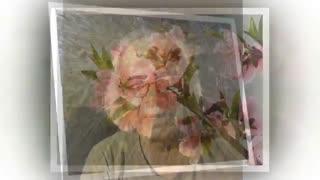 کام تلخ : شعر و خوانش ،  استاد هوشنگ رئوف