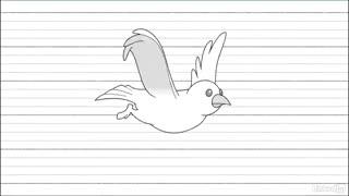 اصول انیمیشن سازی دو بعدی : موجودات پرنده