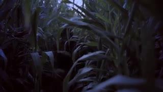 آنونس فیلم دو لکه ابر - iCinemaa.com