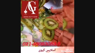 دستگاه اسلایسر و خردکن میوه