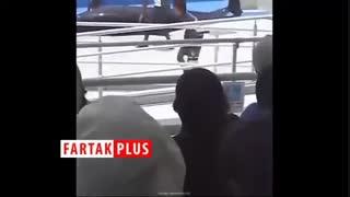 فرار ناکام یک دلفین از دلفیناریوم