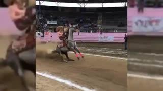 این اسب از سیاه لشگرای فیلم سریع و خشن بوده