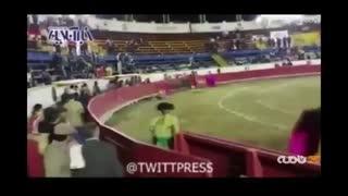 لحظه وحشتناک خُرد شدن فک، زن ۳۲ ساله در مسابقه گاوبازی