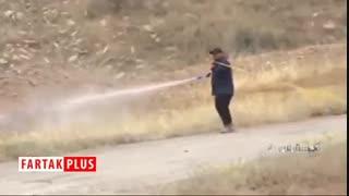 جدیدترین وضعیت مبارزه با ملخها در جنوب کشور