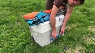یخچال خورشیدی قابل حمل هم از راه رسید