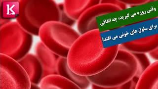 وقتی روزه می گیرید، چه اتفاقی برای سلول های خونی می افتد؟