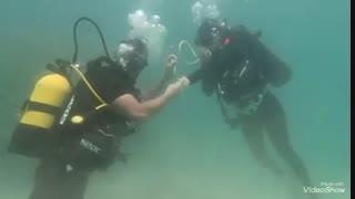 ازدواج شیوا طاهری در زیر آب