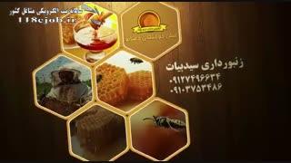 زنبورداری سید بیات زنجان