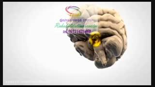 تاثیرات بازی یارانه ای بر روی مغزدرگفتار درمانی شرق کرج|گفتارتوان کرج 09121623463