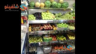 خرید قفسه میوه - تولید شرکت شلفینو