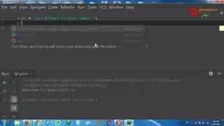 python input method