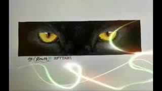 چشم گربه سیاه*-*