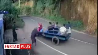 عجیب ترین و خندهدار ترین حادثه رانندگی
