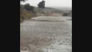 بارش باران سیل آسا