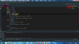 python logical operator