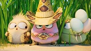 تریلر پایانی انیمیشن The Angry Birds Movie 2