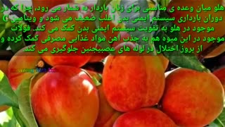 خواص خوردن هلو در تابستان برای بدن