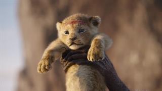 سکانسی از فیلم لایو اکشن The Lion King