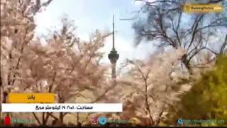 پکن شهری کهن و زیبا و مقصد محبوب گردشگران در چین _بوکینگ پرشیا BookingPersia