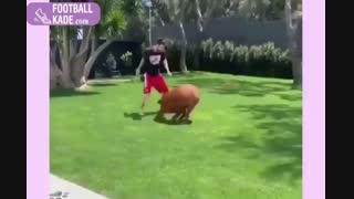 لحظات شاد خانواده ی مسی با یک سگ غول پیکر!