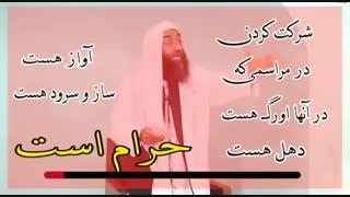 شیخ اهل سنت