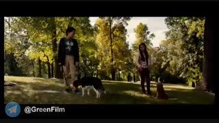 معرفی و دانلود فیلم سفر یک سگ