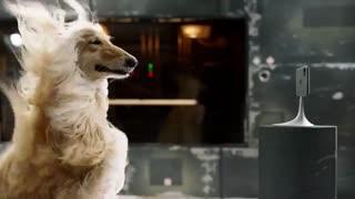 ویدئوی تبلیغاتی آیفون 11 پرو اپل - سیستم دوربین سه گانه