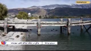 دریاچه واناکا در نیوزلند،تنهاترین درخت جهان در میان آب - بوکینگ پرشیا