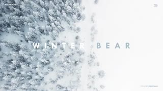 Winter Bear Piano Cover