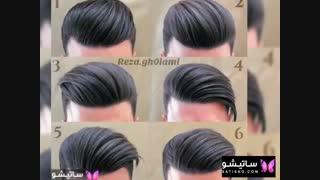 موی مردانه