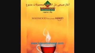 آغاز صبحی دل انگیز با چای محمود
