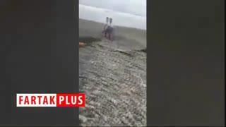 اقدام خطرناک یک جوان حین شکار کروکودیل!