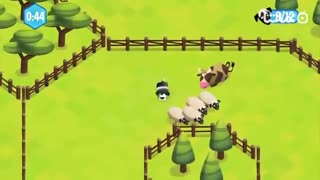Sheepdog Adventure